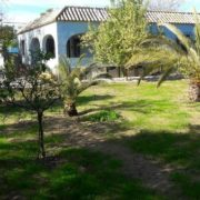 Extensive garden with lawn area.